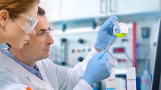 Расшифровка анализа крови на вирус эпштейн барра у детей — Все о детях